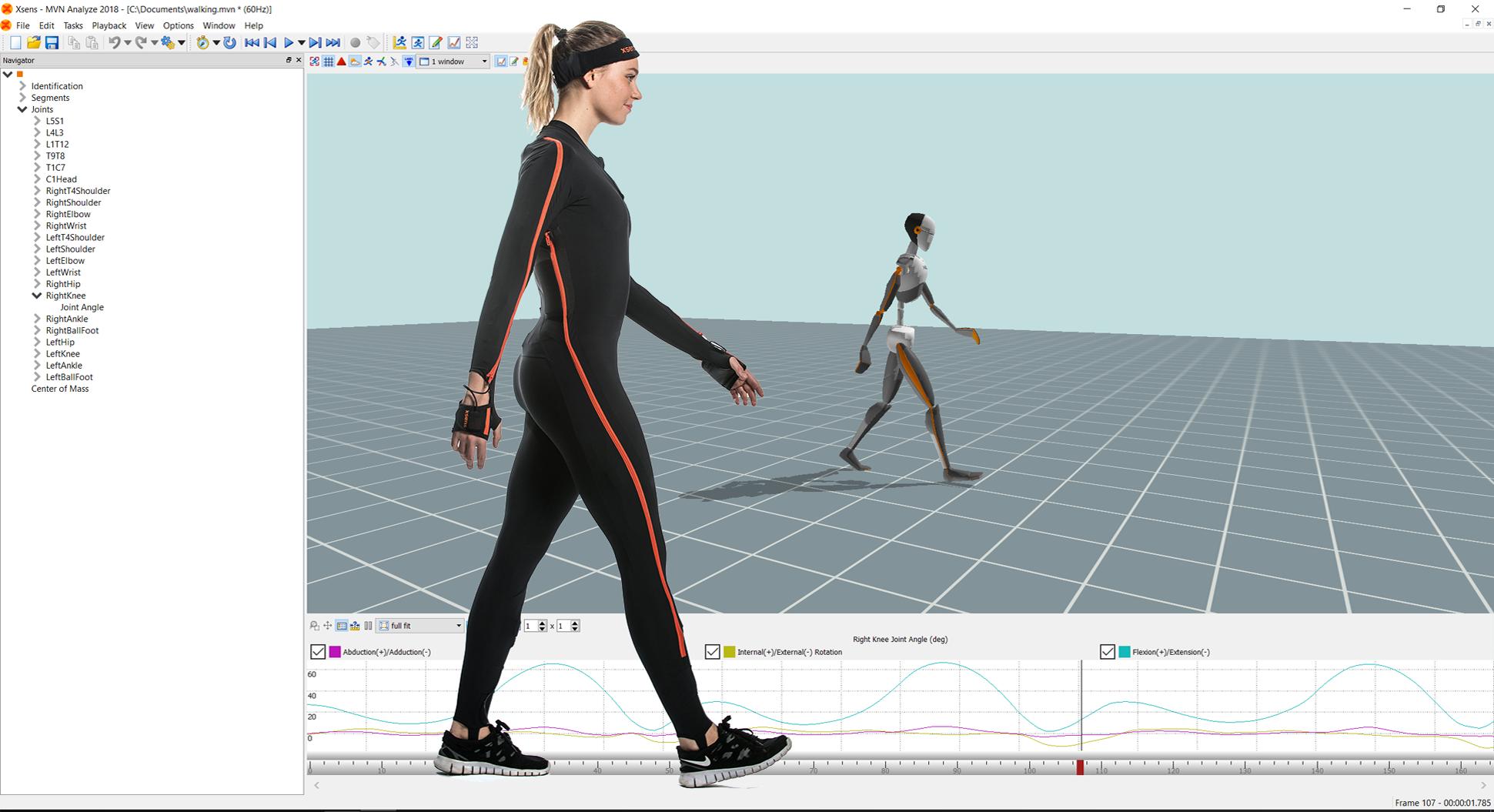 analyze-walking