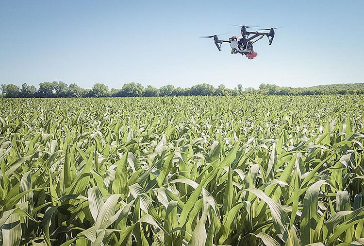 Drone - 2